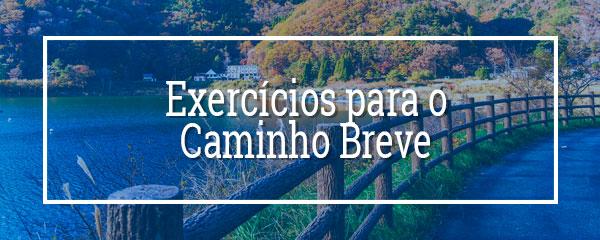 Exercícios para o Caminho Breve